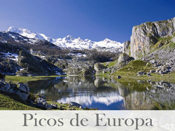 picos-de-europa